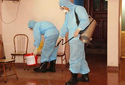 Dịch vụ diệt kiến tại nhà - công ty diệt kiến uy tín hiệu quả